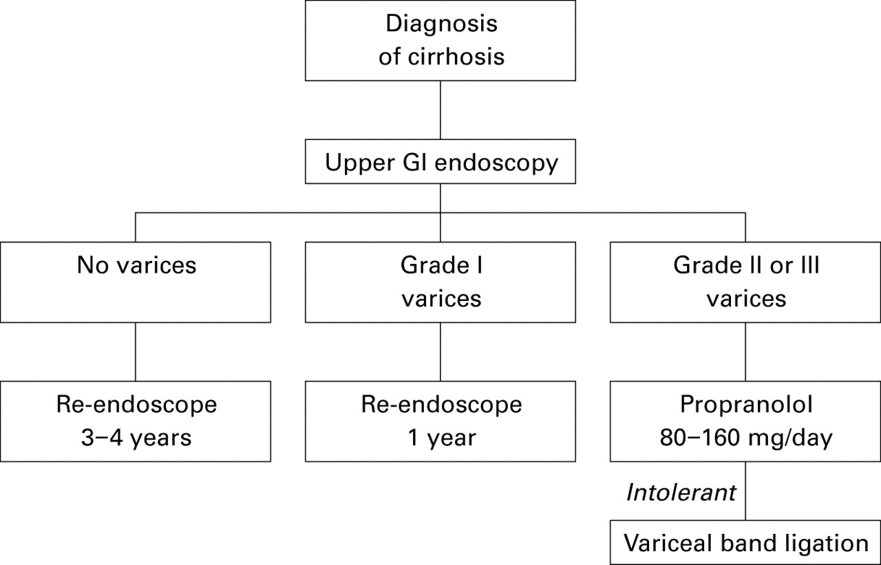 How to Deal With Esophageal Varices recommendations