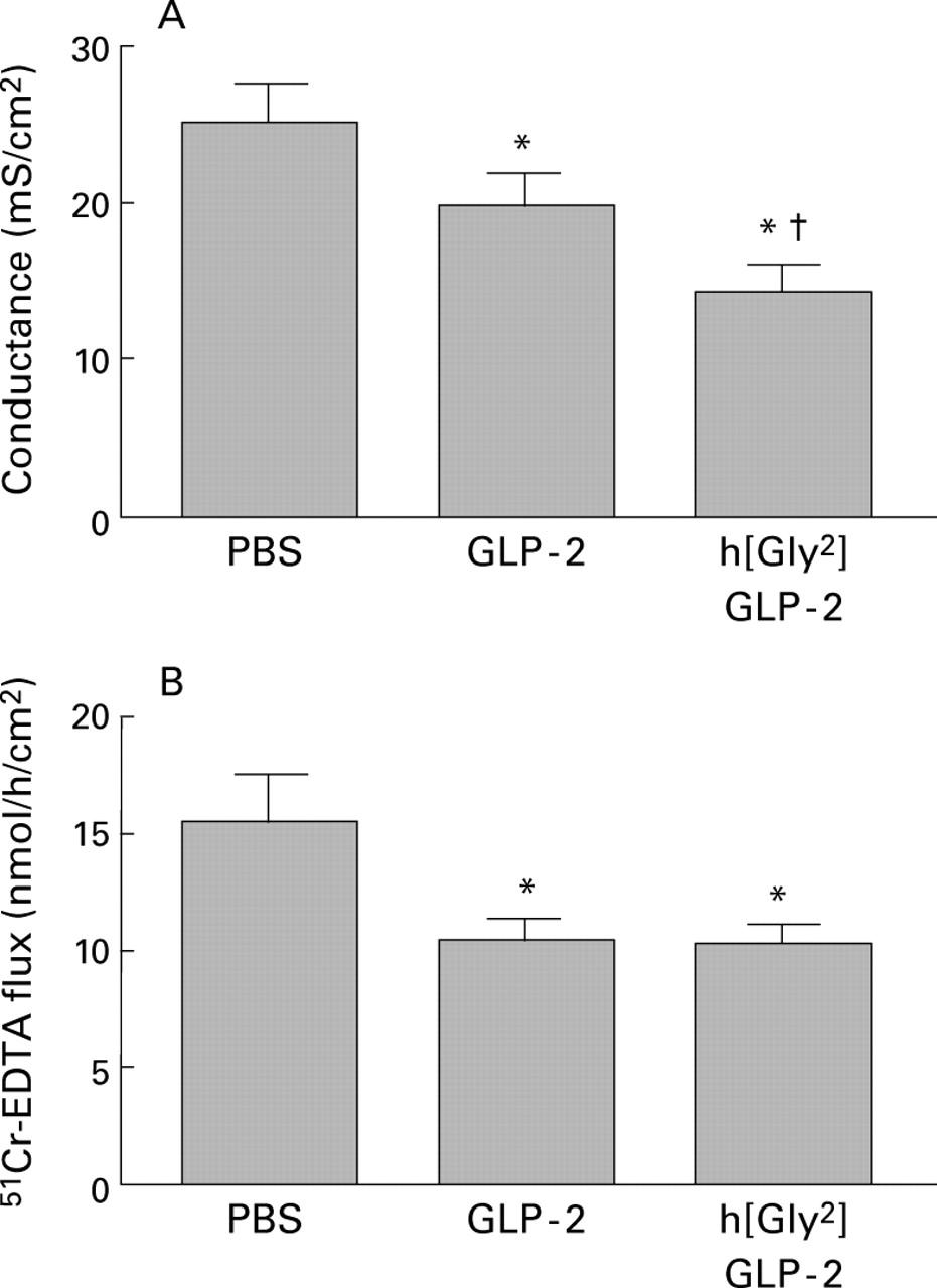 Glucagon-like peptide-2 enhances intestinal epithelial barrier