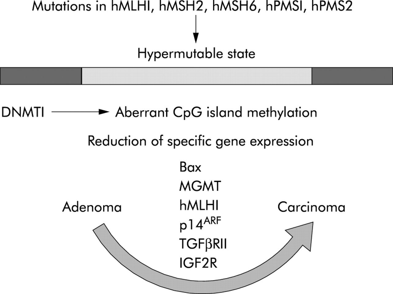 motor expression colorectal carcinoma