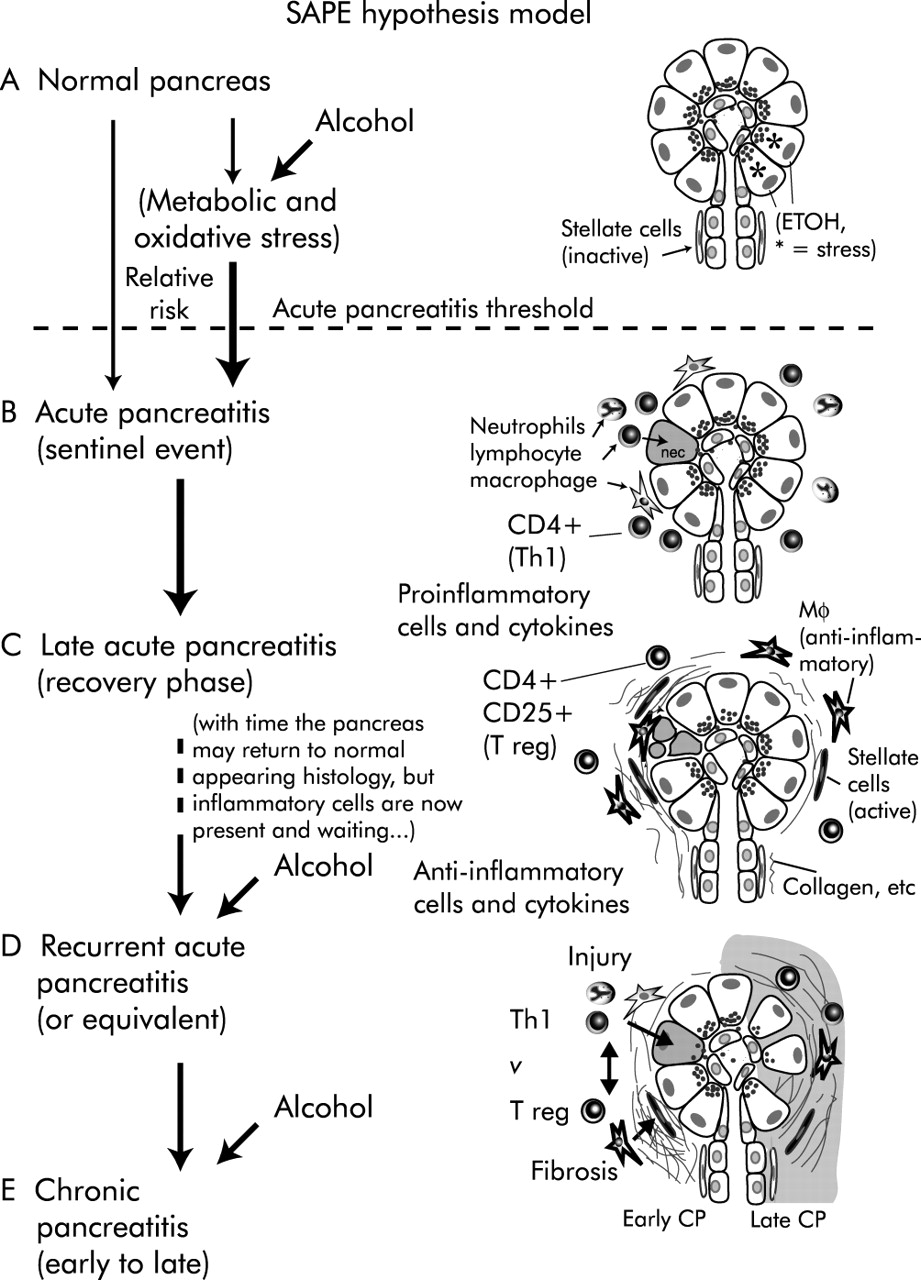 acute alcohol intoxication treatment guidelines