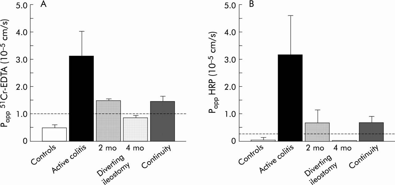 Dynamics of mucosal permeability and inflammation in
