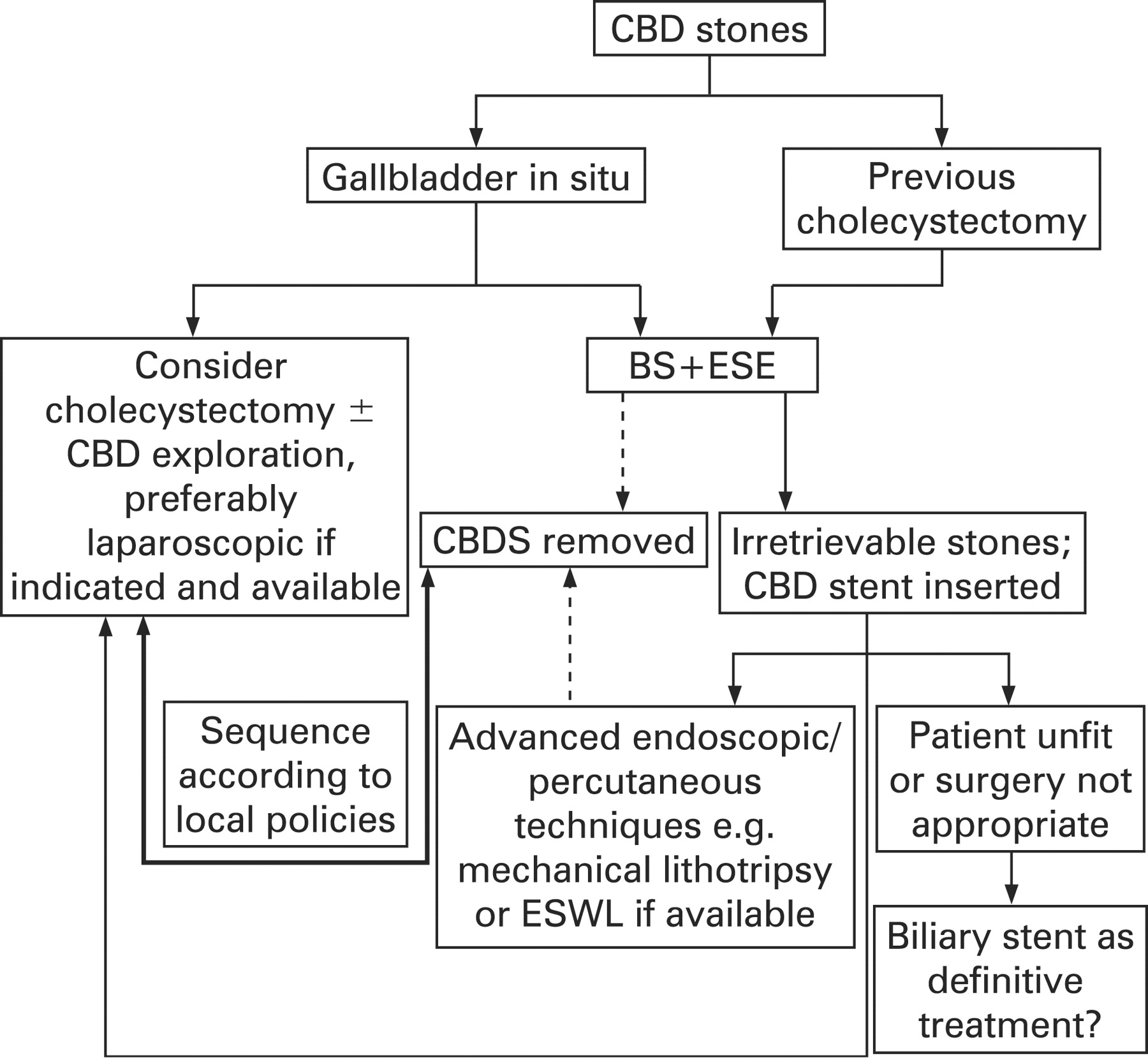 Guidelines On The Management Of Common Bile Duct Stones