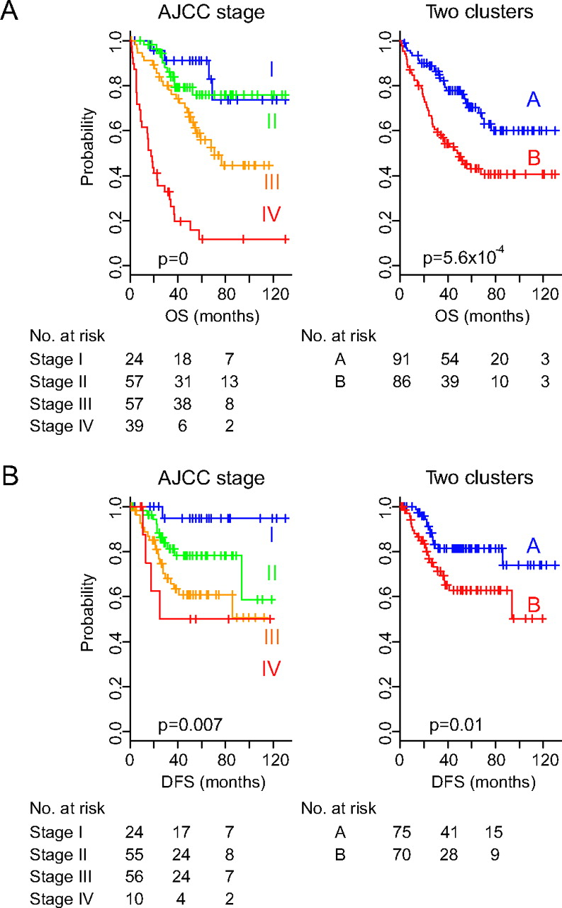 Prognostic Gene Expression Signature Associated With Two Molecularly Distinct Subtypes Of Colorectal Cancer Gut