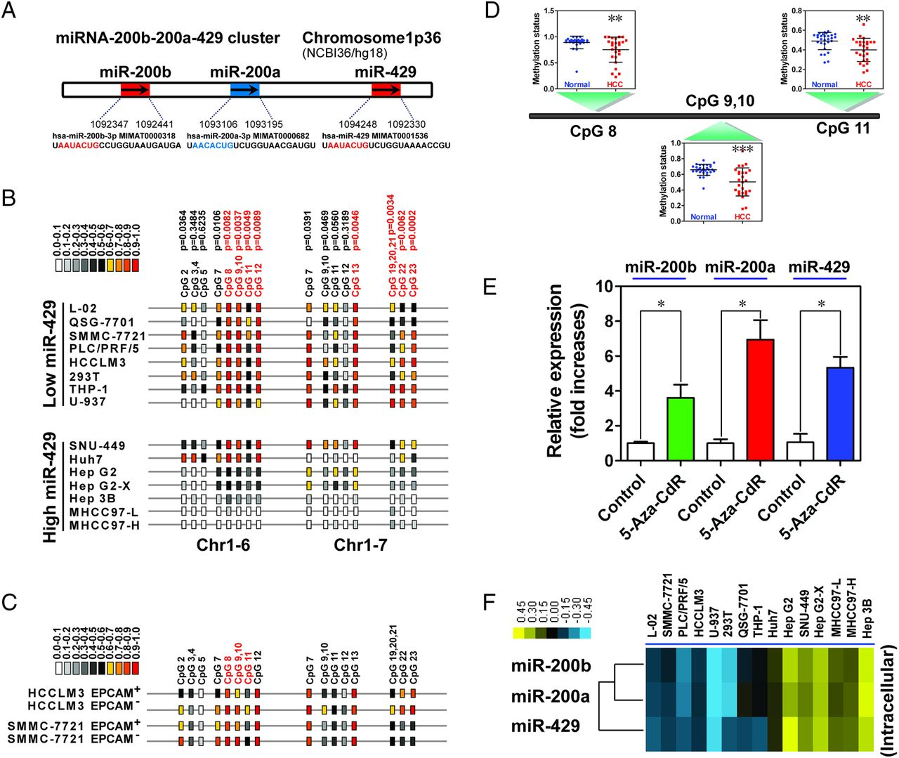 Epigenetic Modification Of Mir 429 Promotes Liver Tumour Initiating Pc Schematic Automation Screenshot 6 Download Figure