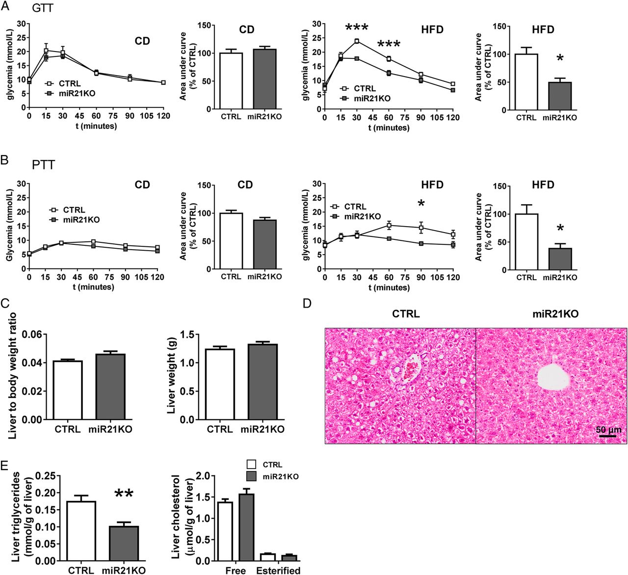 Stress Activated Mir 21mir 21 In Hepatocytes Promotes Lipid And