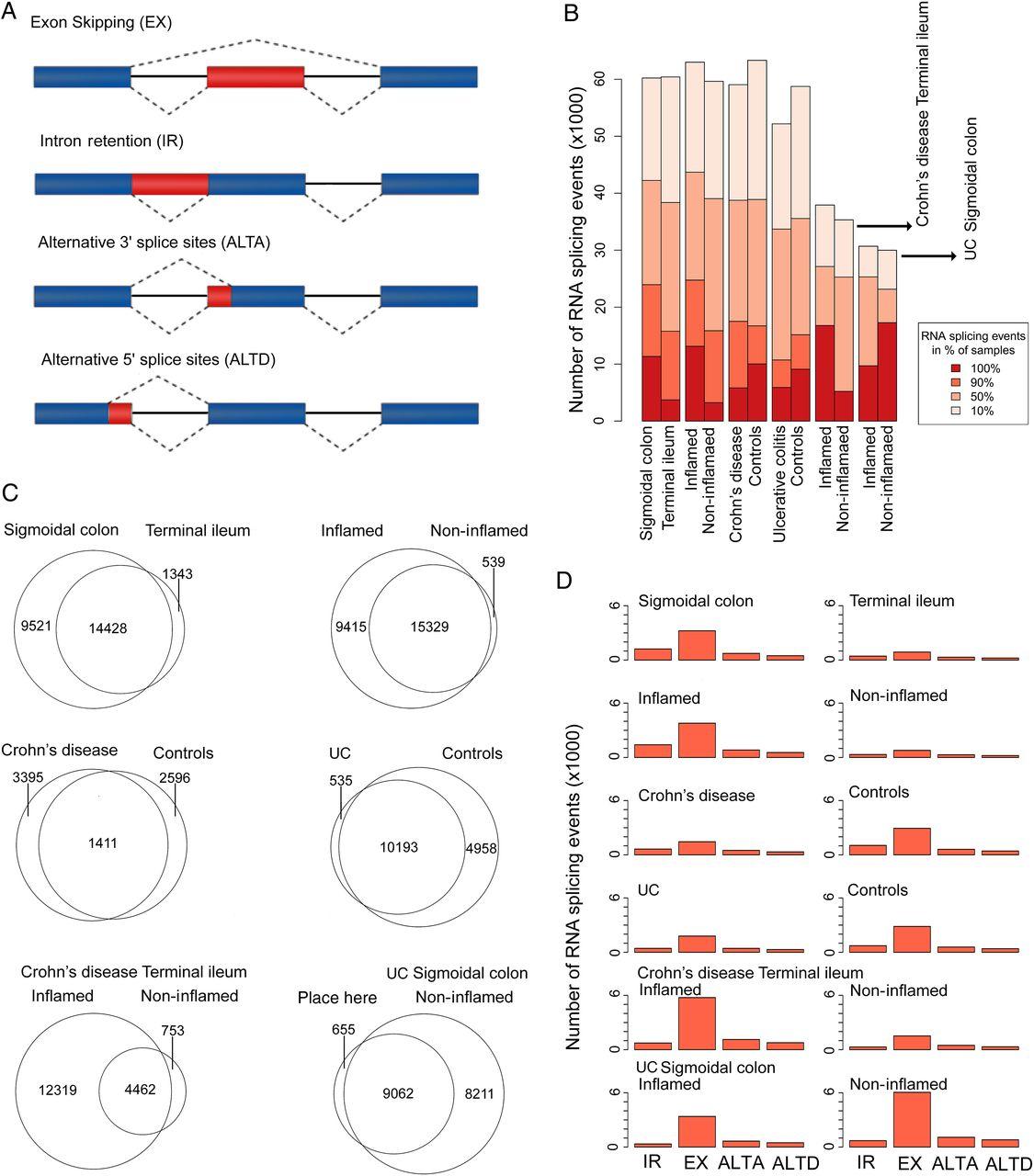 Uncoupling of mucosal gene regulation, mRNA splicing and