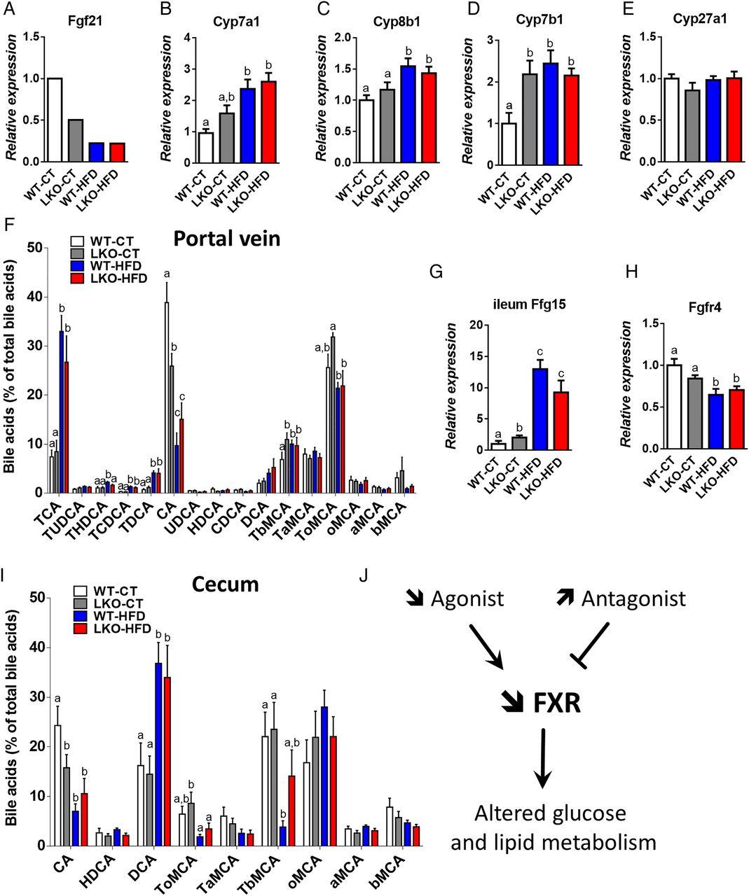 hepatocyte myd88 affects bile acids  gut microbiota and