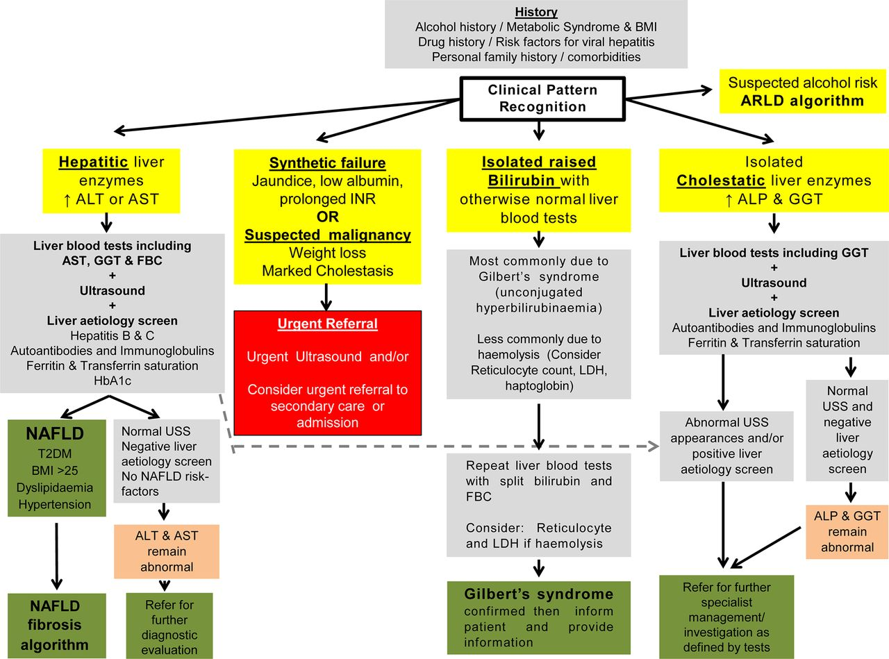 Guidelines On The Management Of Abnormal Liver Blood Tests Gut To Verify That Resistances In Series Do Indeed Add Let Us Consider Download Figure