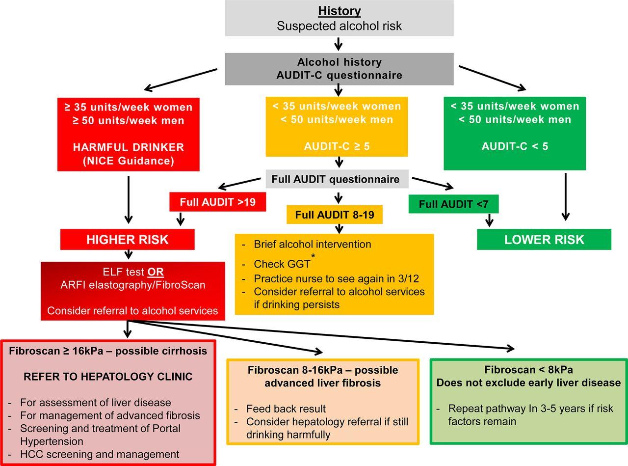 harrisons gastroenterology and hepatology 2e