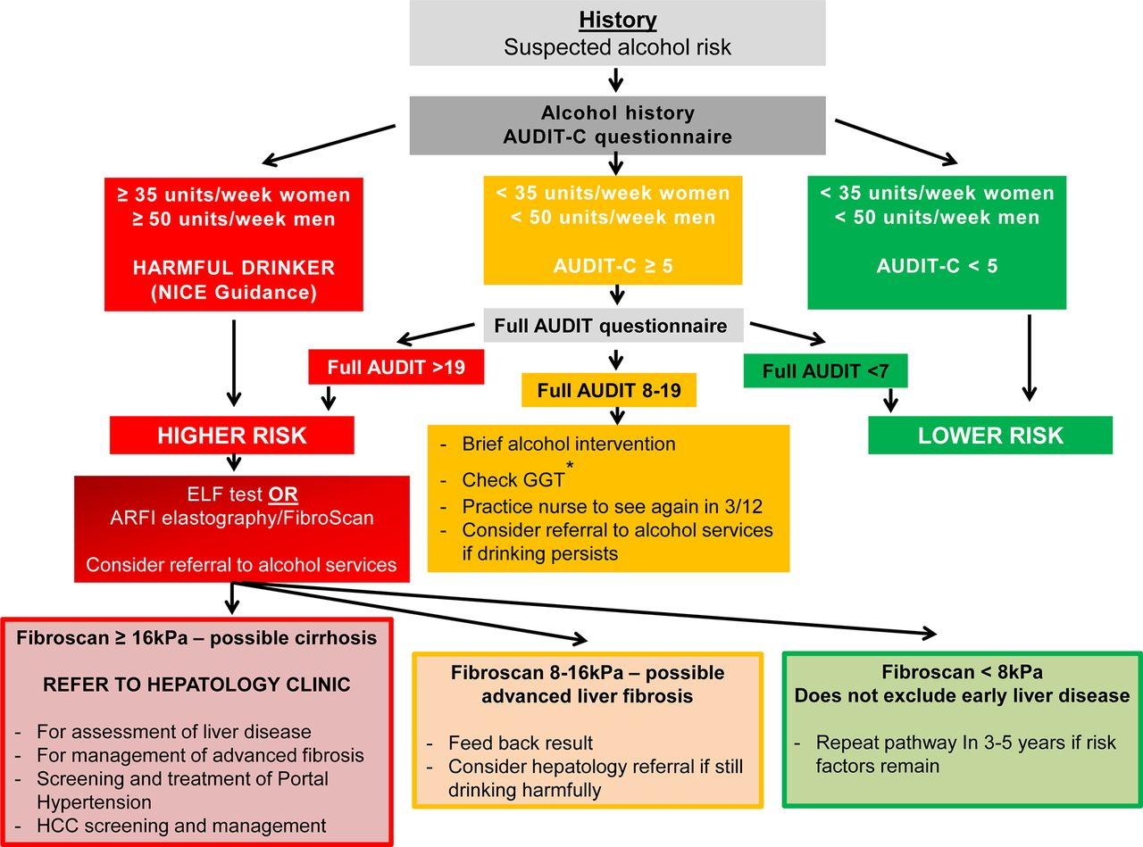 Guidelines on the management of abnormal liver blood tests | Gut