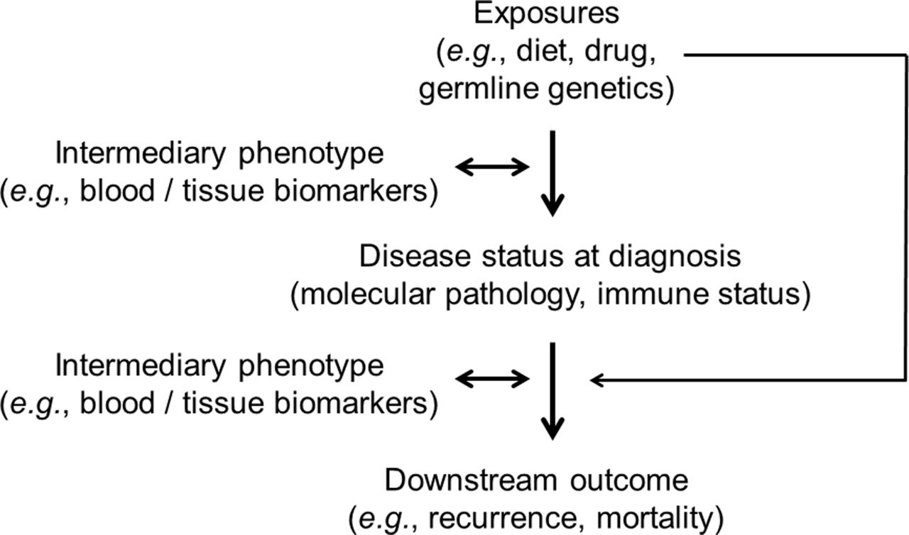Integrative analysis of exogenous, endogenous, tumour and immune