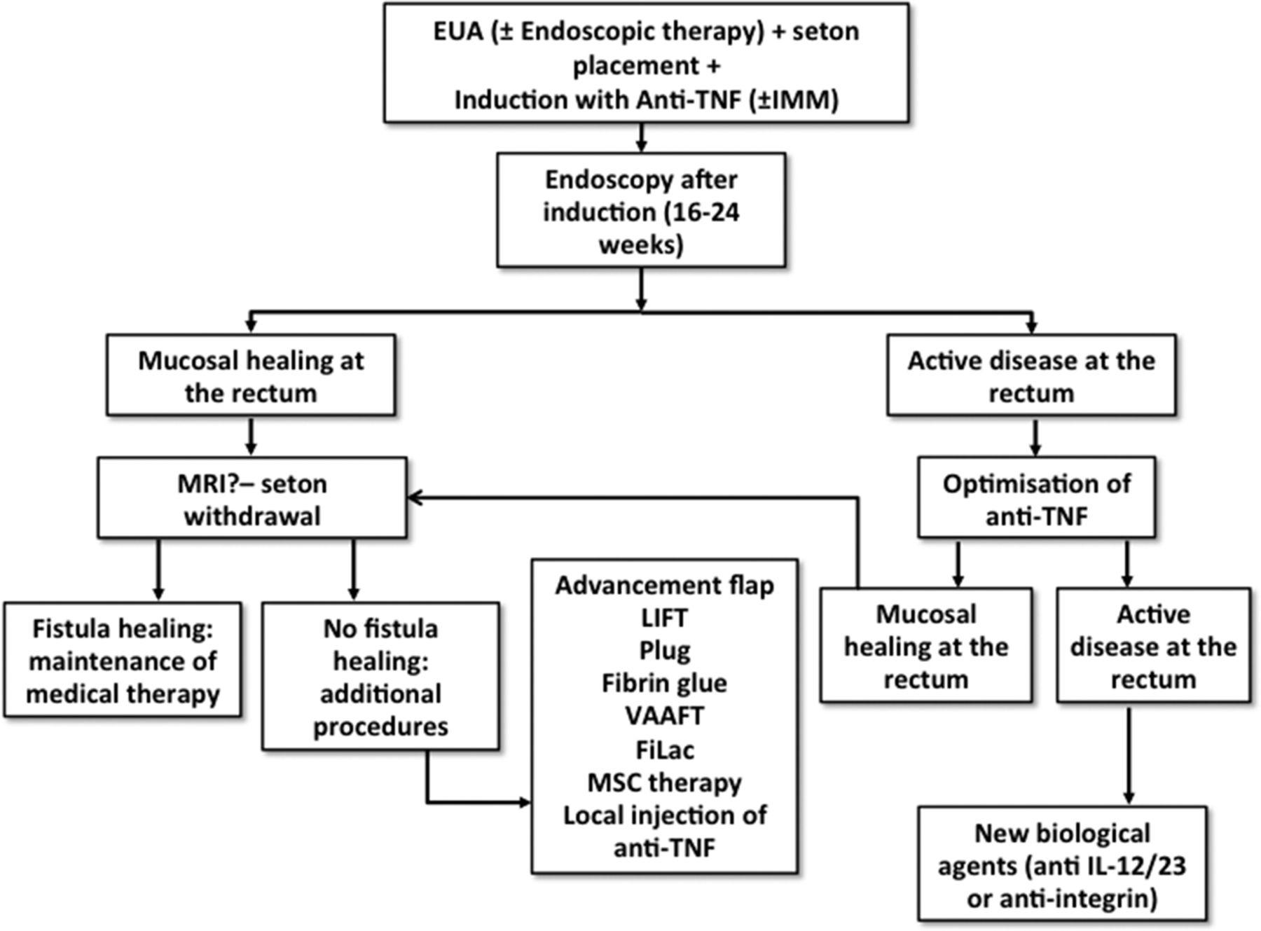 Modern management of perianal fistulas in Crohn's disease