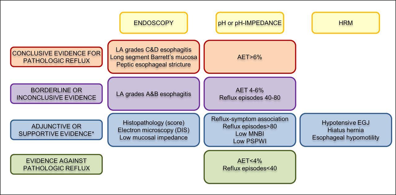 Modern diagnosis of GERD: the Lyon Consensus   Gut