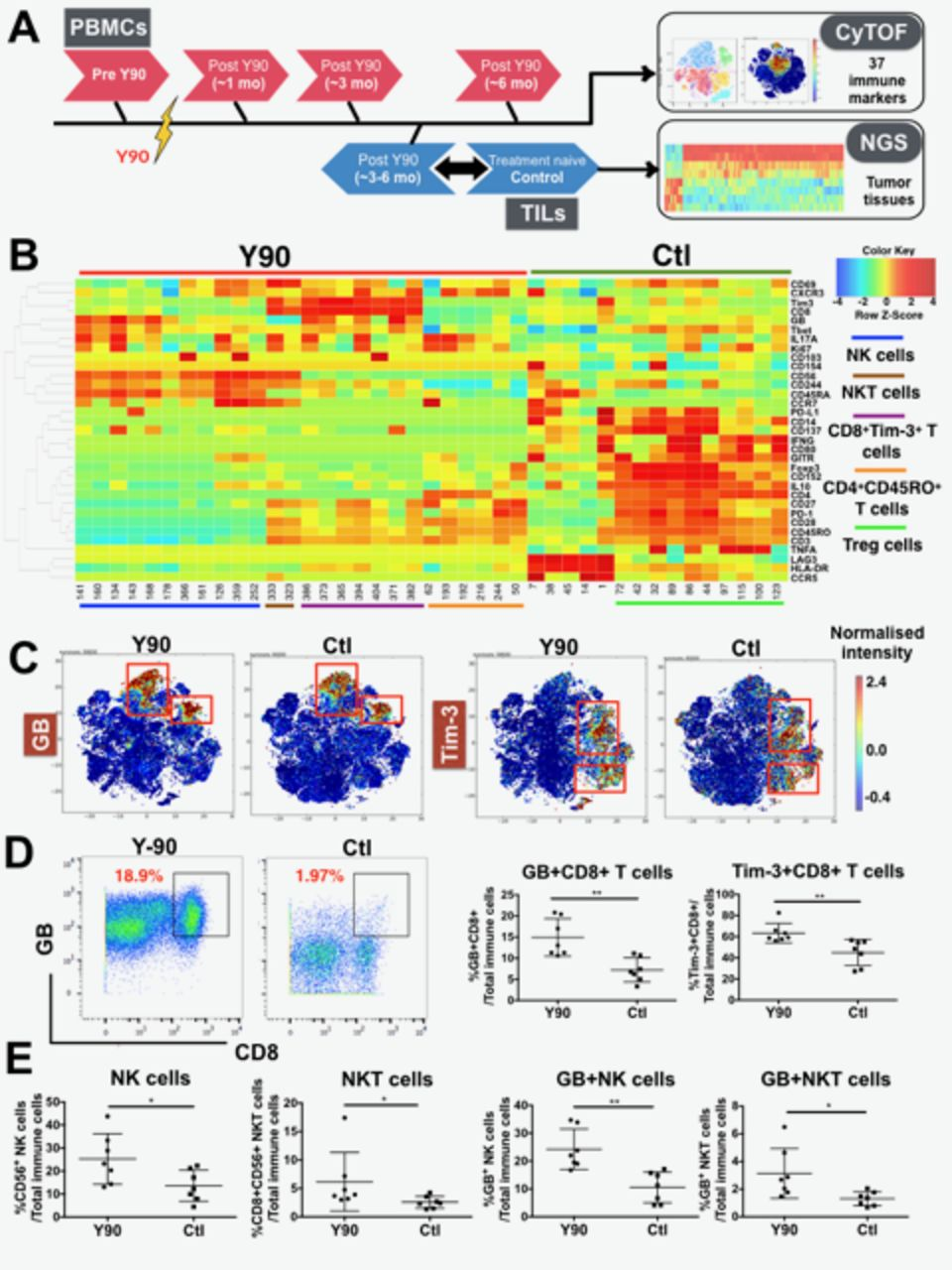 Immune activation underlies a sustained clinical response to