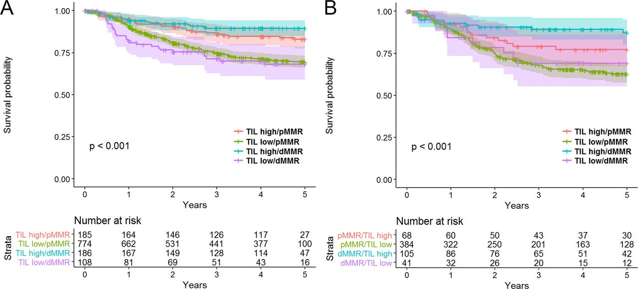 Lymphocytic Response To Tumour And Deficient Dna Mismatch Repair Identify Subtypes Of Stage Ii Iii Colorectal Cancer Associated With Patient Outcomes Gut