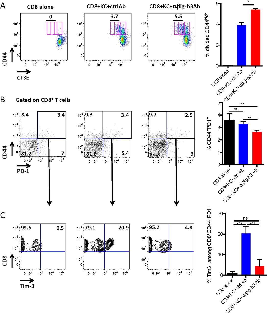 Stromal protein βig-h3 reprogrammes tumour microenvironment in