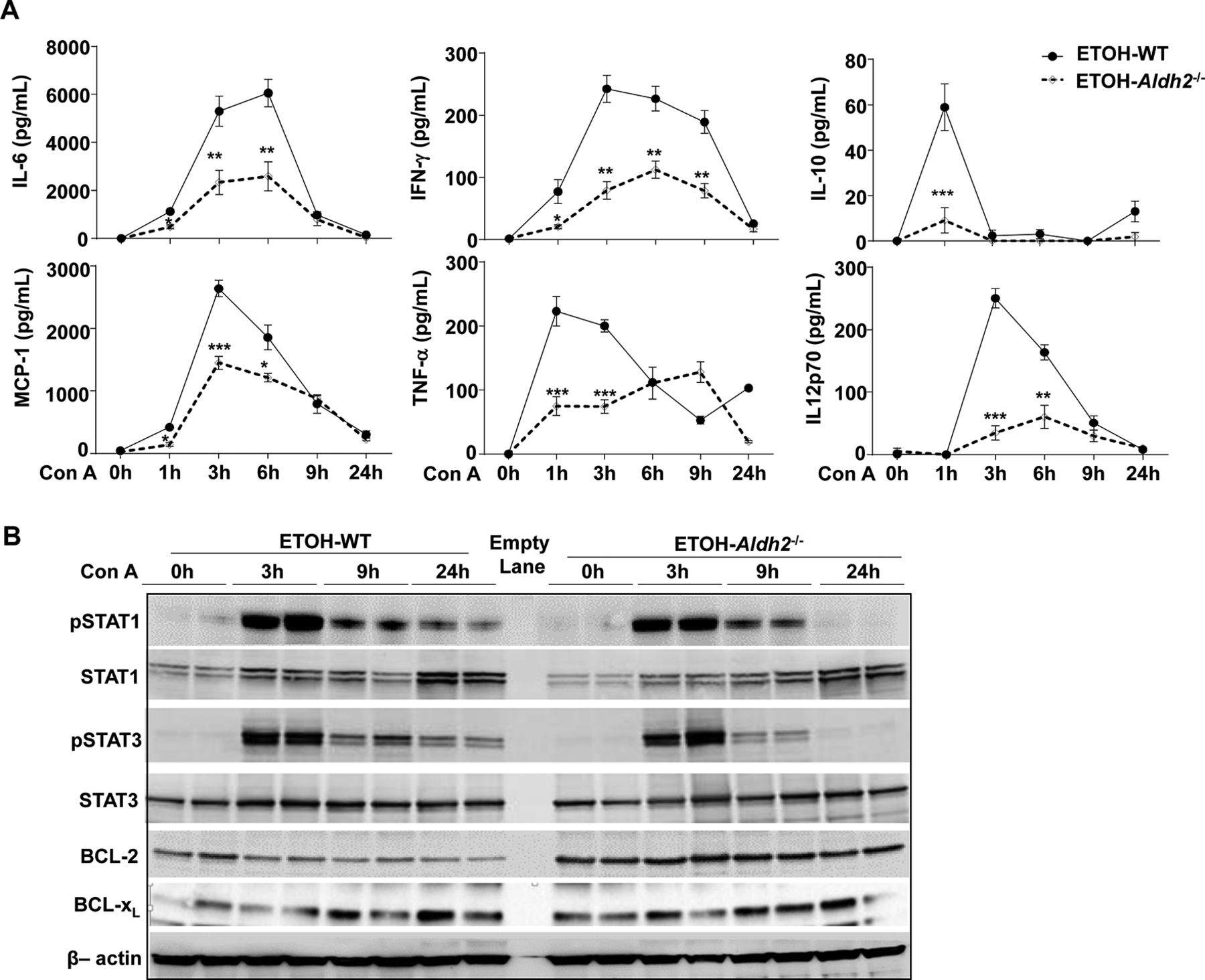 Alcohol inhibits T-cell glucose metabolism and hepatitis in