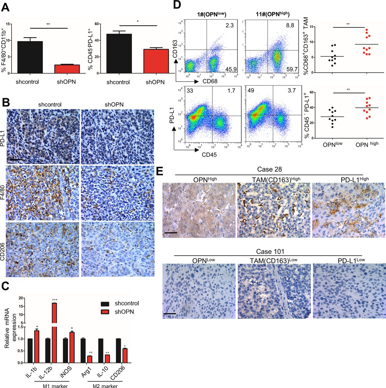 Disruption Of Tumour-associated Macrophage Trafficking By