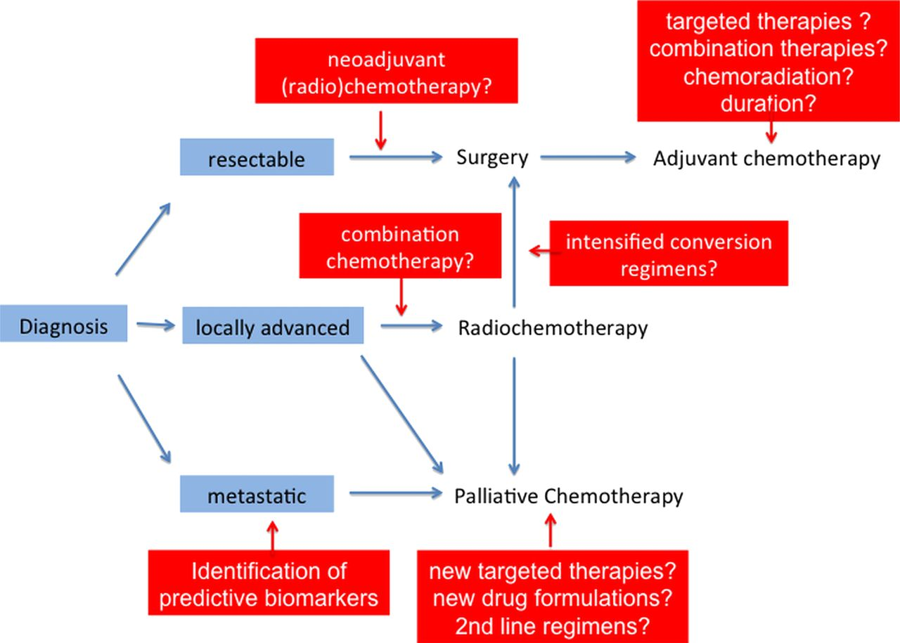 Current concepts and novel targets in advanced pancreatic cancer   Gut