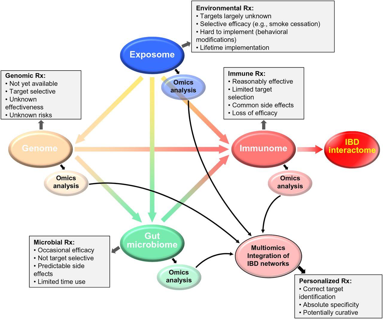 Drug Development In Ibd From Novel Target Identification