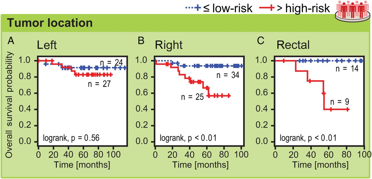 BCL-2 system analysis identifies high-risk colorectal cancer