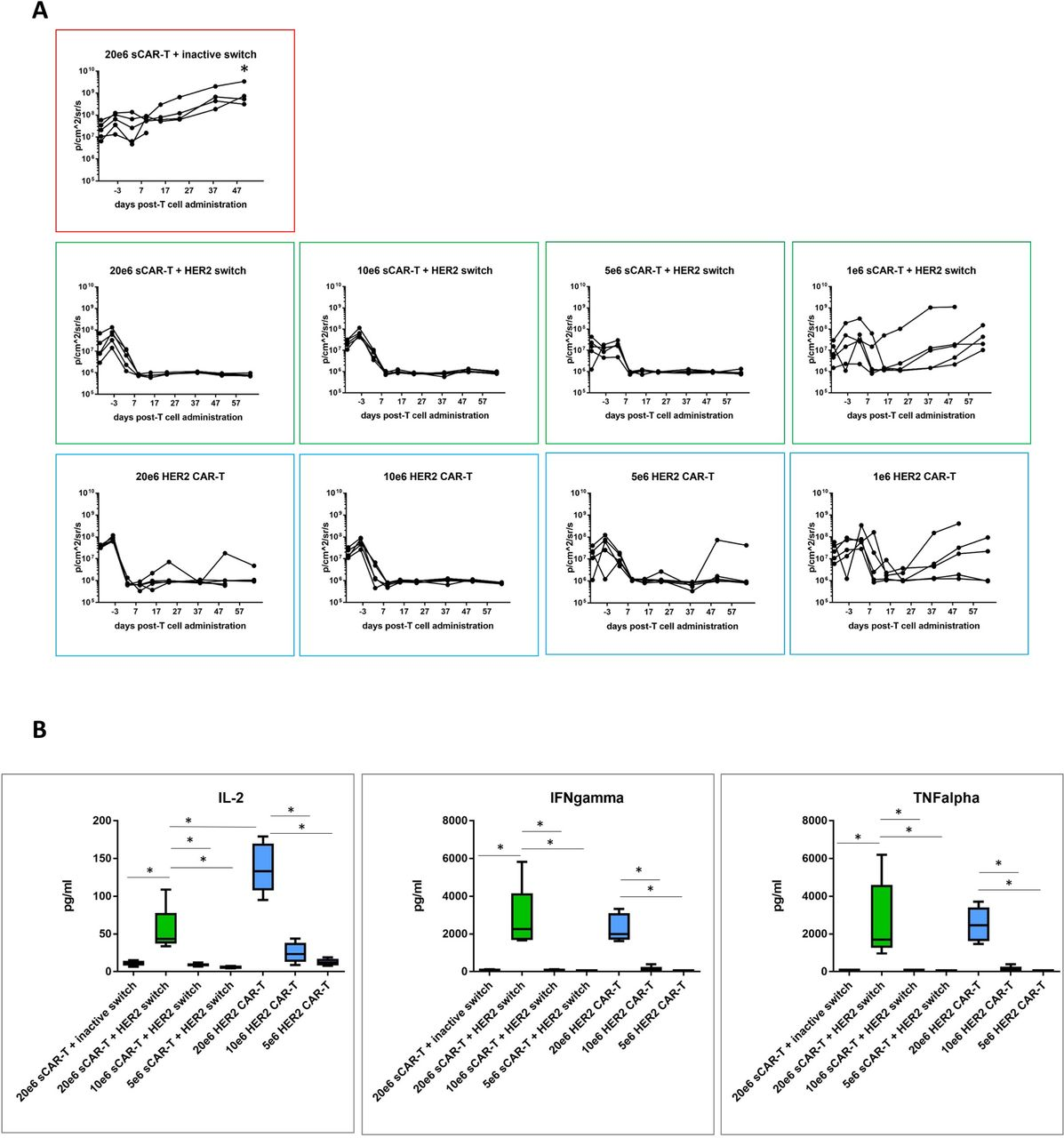 Switchable Car T Cells Mediate Remission In Metastatic Pancreatic Intermediate Switch Whereby More Than Three Switches Being Used To Download Figure Open New Tab