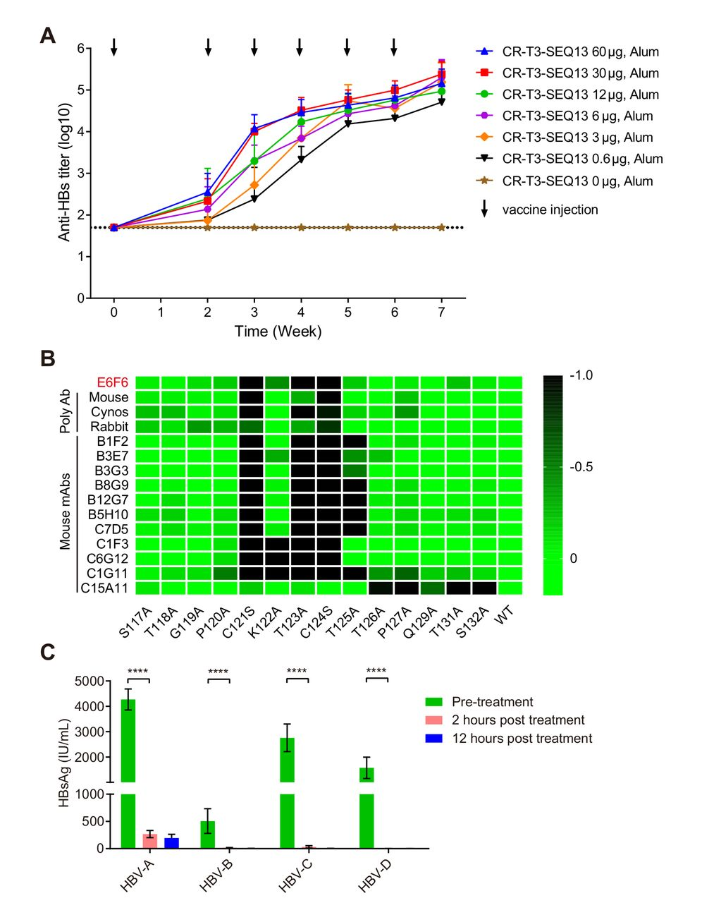 A unique B cell epitope-based particulate vaccine shows