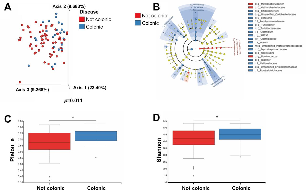 Modulation of cytokine patterns and microbiome during