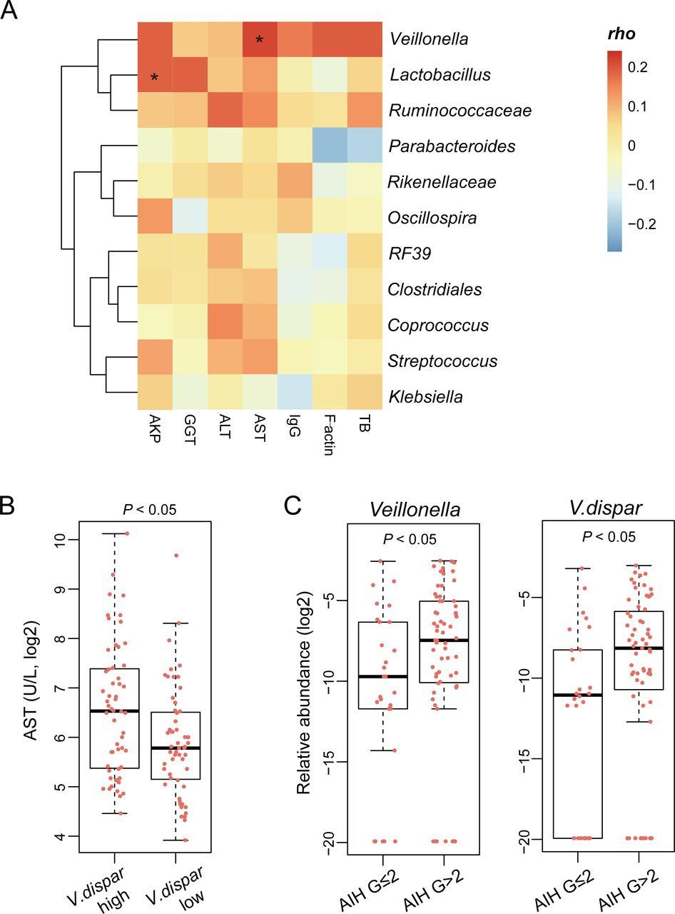 Alterations of gut microbiome in autoimmune hepatitis   Gut