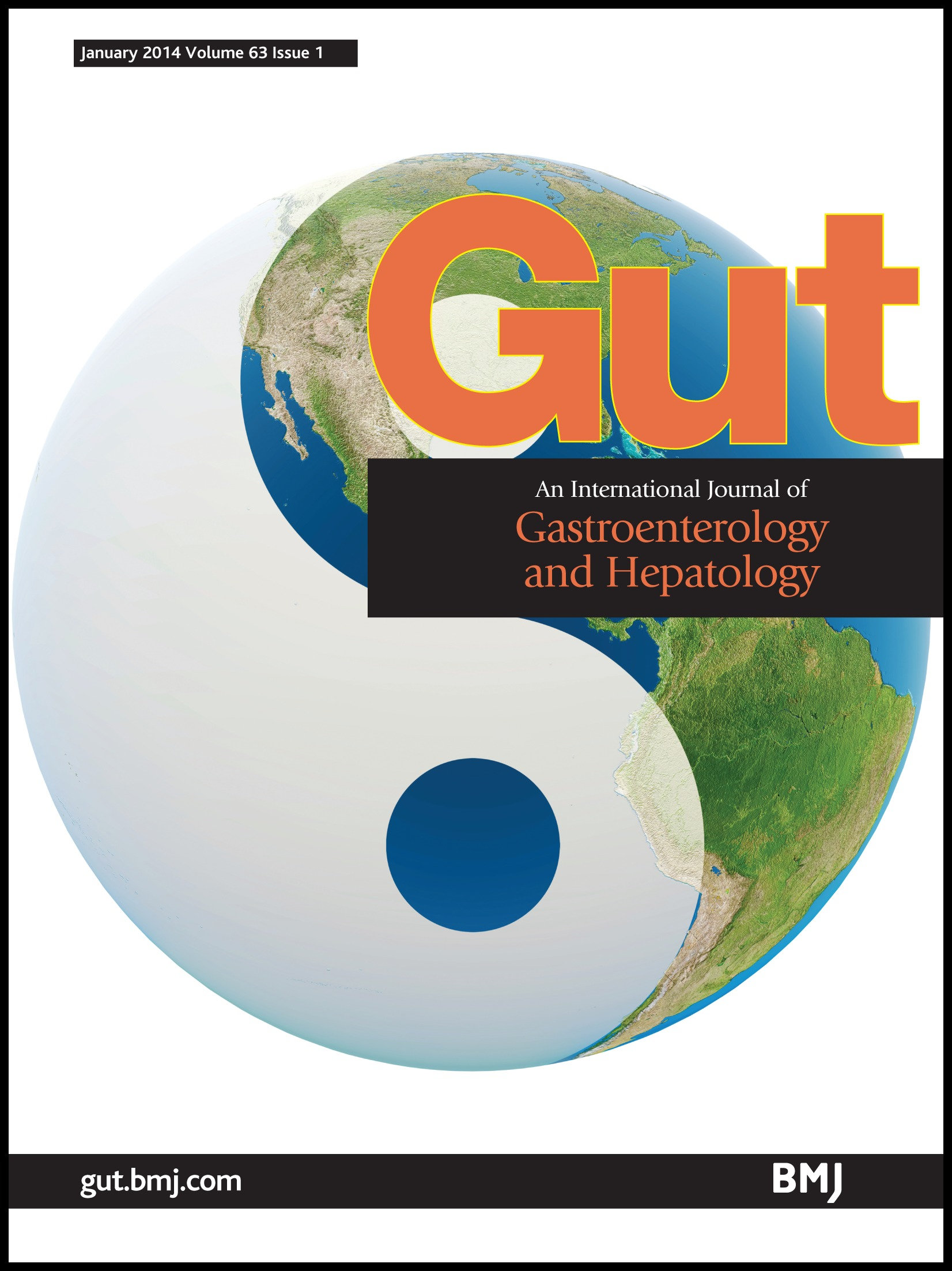 British Society of Gastroenterology guidelines on the diagnosis and